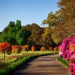 Bien arroser son jardin